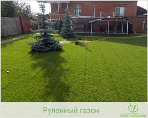 Рулонный газон укладка в Казани