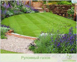 Что выбрать рулонный газон или траву?