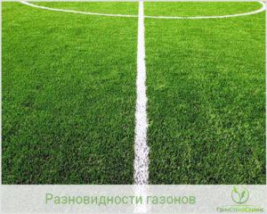 Спортивный газон - лучшее покрытие для спортплощадки