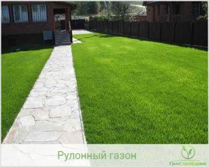 Посевной газон в Казани