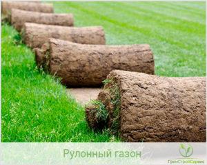 Технология производства рулонного газона