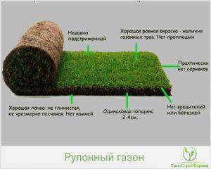 Свойства хорошего газона