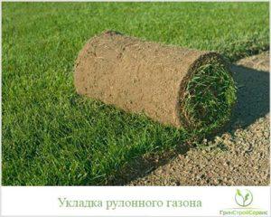 стоимость укладки рулонного газона