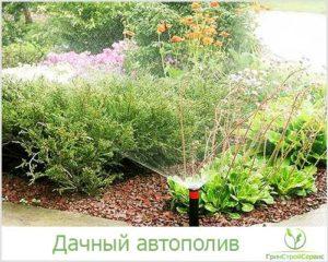 садовый автополив