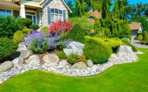 Элементы ландшафтного дизайна: альпинарий, рокарий, цветник