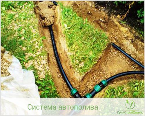 монтаж системы автоматического полива растений