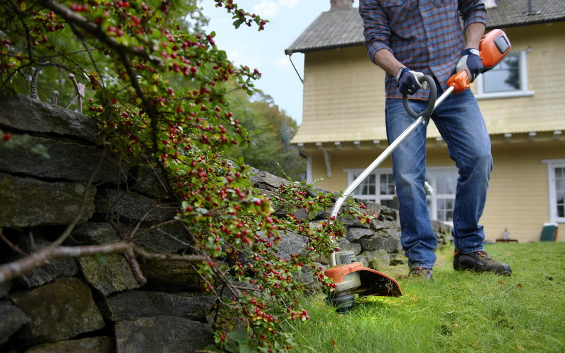 Уход за рулонным газоном: весна, лето, осень, зима