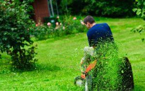 Стрижка рулонного газона: правила и нюансы