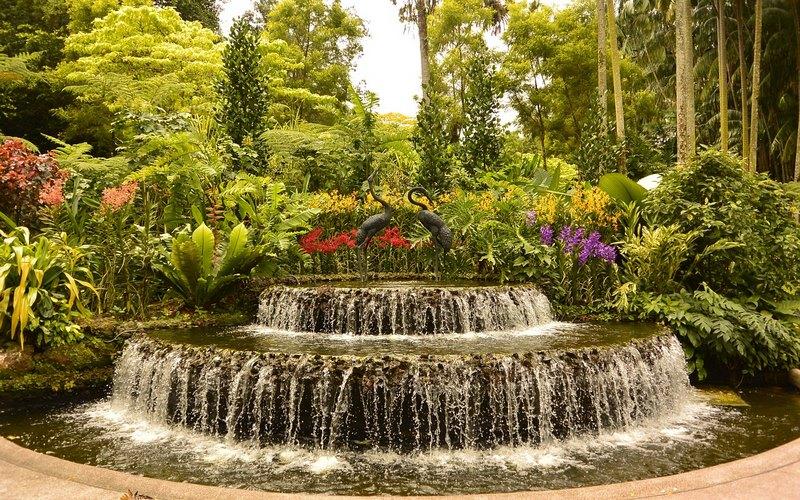 Искусственный водоем в ландшафтном дизайне участка