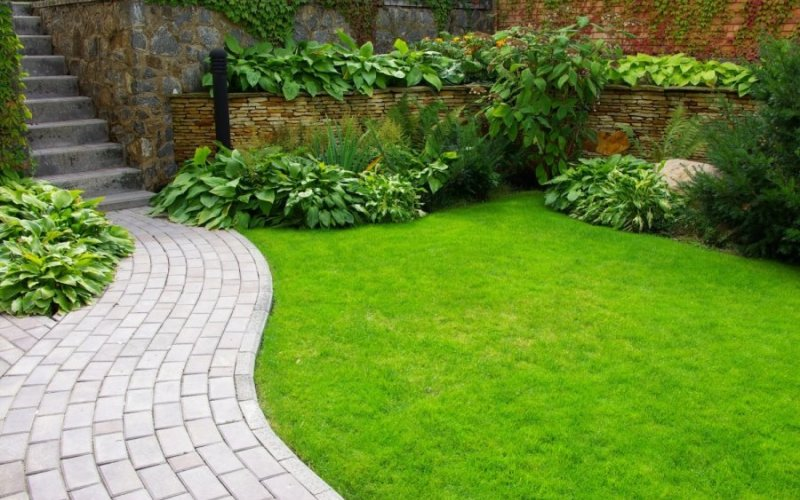 Как выбрать, купить и уложить рулонный газон