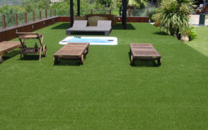 Рулонный газон: типы травы и советы специалистов