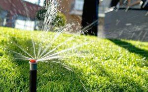 Где купить в Казани оборудование для полива газона?