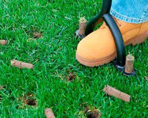 уход за газоном осенью подготовка к зиме
