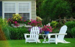 Когда и как правильно сажать газон на даче?