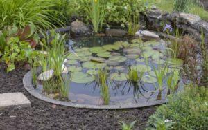 Декоративный водоем в саду или на загородном участке